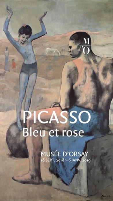 Picasso. Bleu et Rose screenshot 1