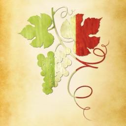Italian Wine Guide iPhone