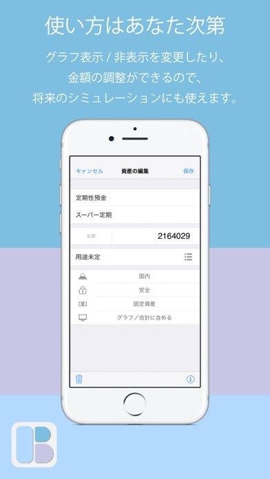 家計のバランスシート screenshot1