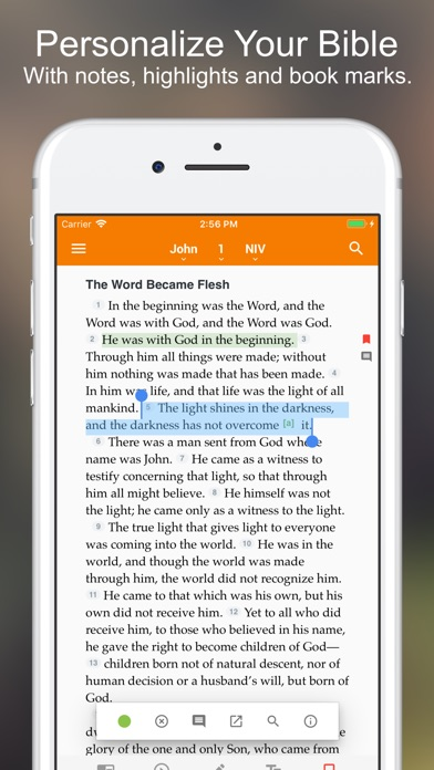Top 20 Alternative Apps To NIV Bible* for iPhone & iPad