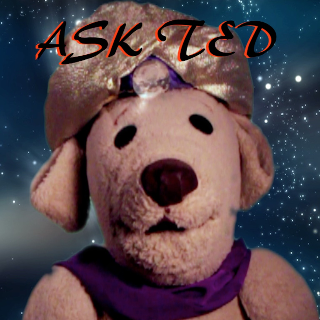 Ask Ted E hack