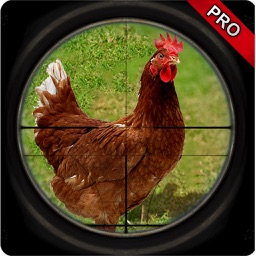 Chicken Hunt Sniper shoot Pro
