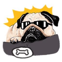 Cute Pug Wonderful Dog Sticker