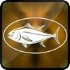 3D Bass Fishing Extreme River Juggle Flick