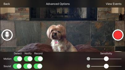 iCam Pro - Webcam Streamingのおすすめ画像2