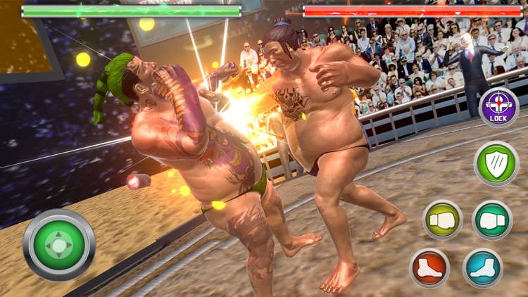 Real Sumo Fighting 2017 screenshot-3