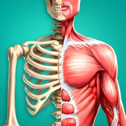 Discover Human Body - Anatomy and Physiology