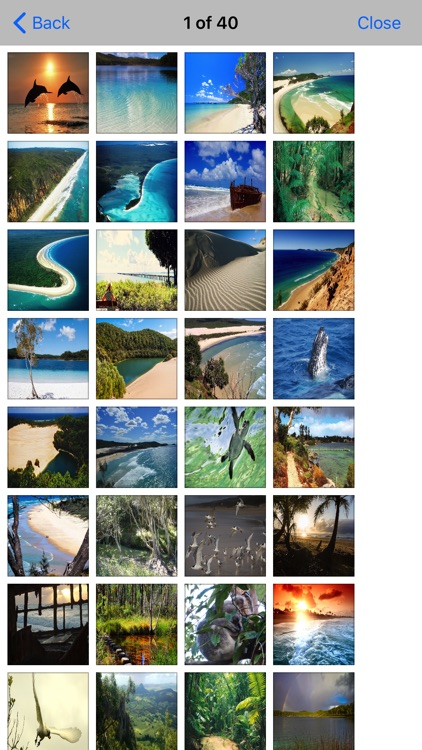 Fraser Island Travel - Guide screenshot-4