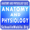Anatomy and Physiology Practice Exam - Aashita Jadhav