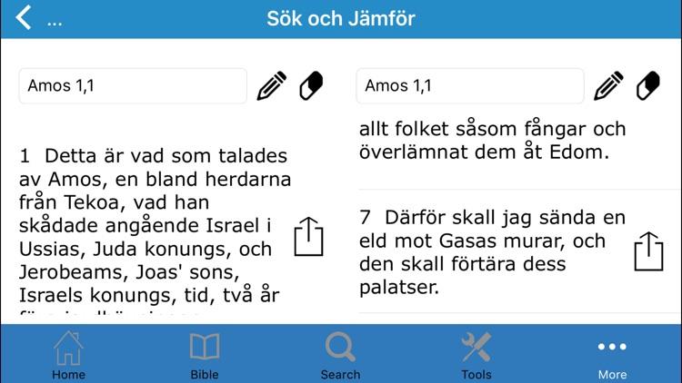 The Bible in Swedish (Bibeln på Svenska) screenshot-4