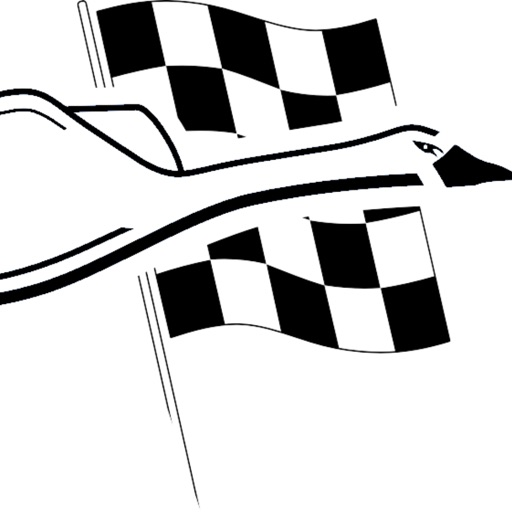 WHZ Racing Team icon