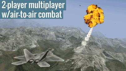 Screenshot from X-Plane 10 Flight Simulator