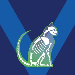 Bone Viewer - Cat Skeleton