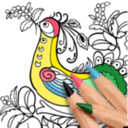 Coloring Expert