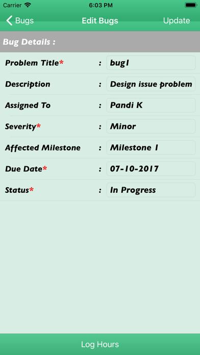 Project Management Tools screenshot four