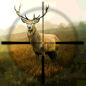 Hunting Simulator app