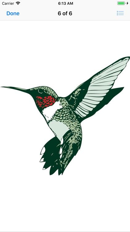 My Hummingbird Stickers screenshot-8