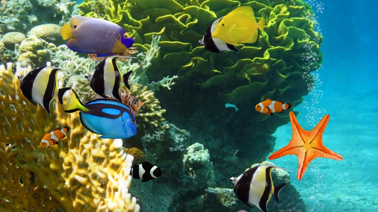 MyReef 3D Aquarium 2 HD screenshot-2
