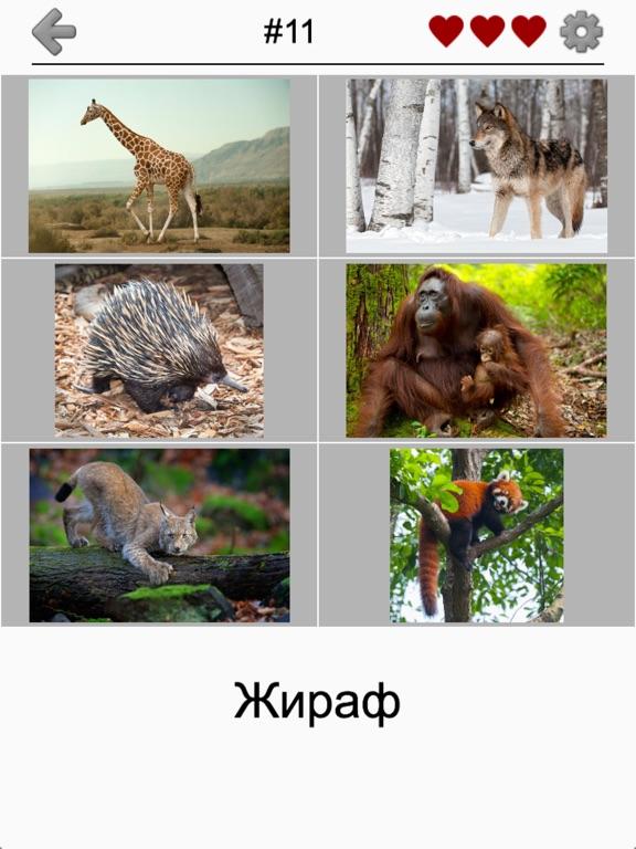 Скачать игру Животные - Все звери и птицы