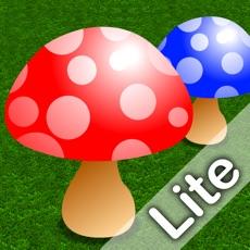 Activities of Mushroom Maths - Lite