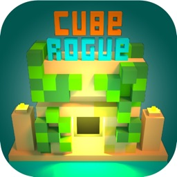 Cube Rogue : block craft world