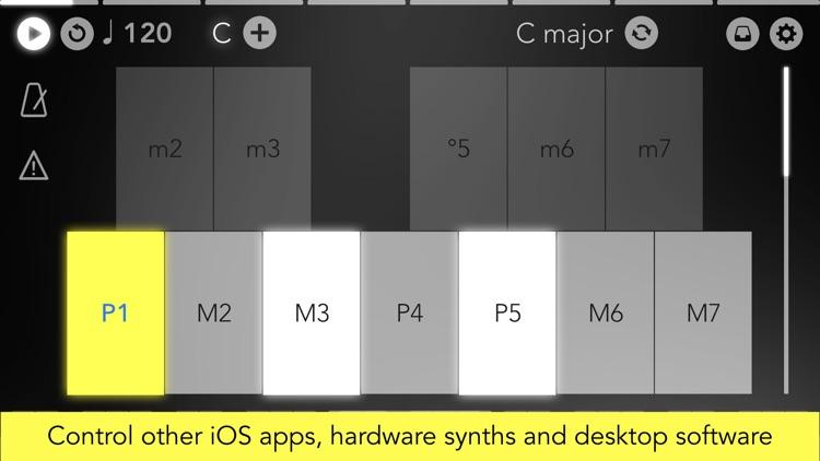 Navichord Lite chord sequencer screenshot-5