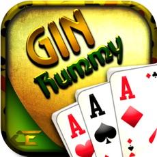 Activities of Gin Rummy Pro