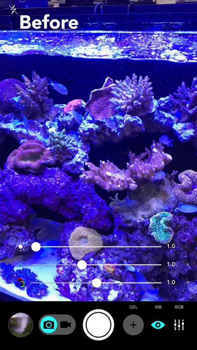 Aquarium Cameraのおすすめ画像1