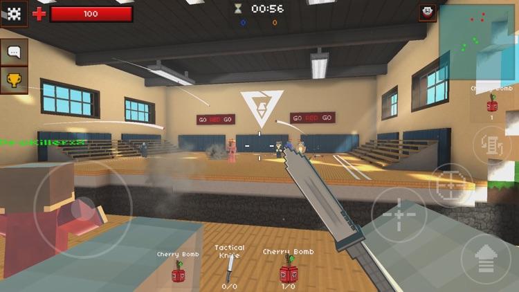 Pixel Strike 3D - FPS Gun Game screenshot-0