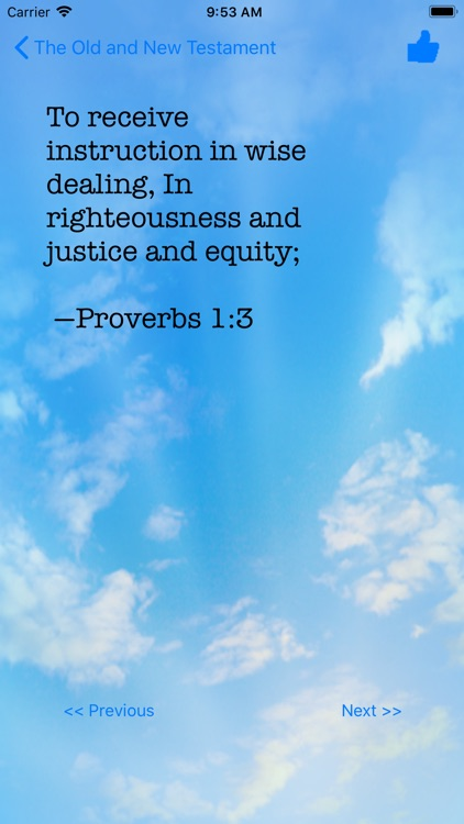 Bible Quotes screenshot-5