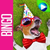 Codes for DOG BINGO - Live Dog Bingo & Slots! Hack