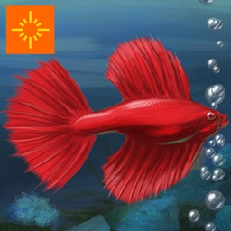 Fish Tycoon Free for iPad