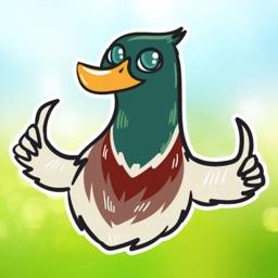 Quack-Quack Duck Stickers