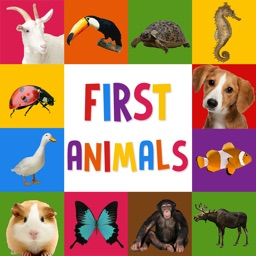 First Words for Baby: Animals - Premium