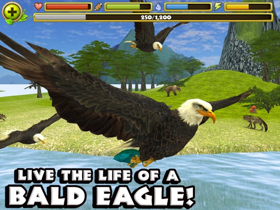 Eagle Simulator на iPad
