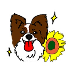 Papillon Dog Emoji Sticker