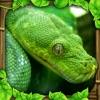 Snake Simulator Reviews