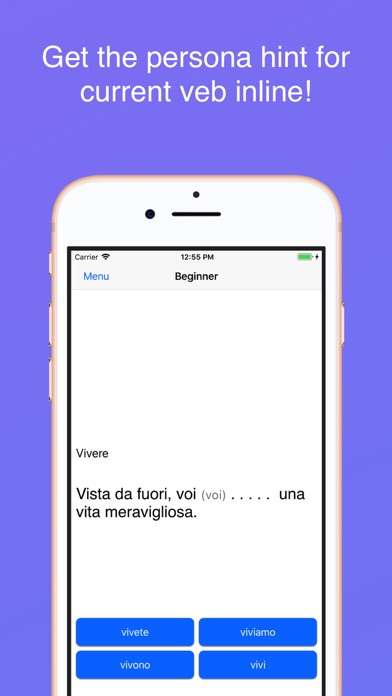 Italian Irregular Verbs screenshot two