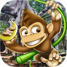 Activities of Monkey Adventure Running