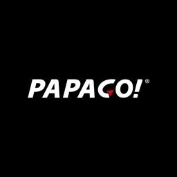 Papago DVR