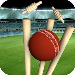 Real Cricket Runout Championship