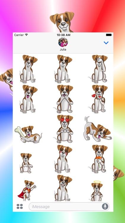 Джек Рассел - милая собачка