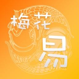 梅花易数专业版HD