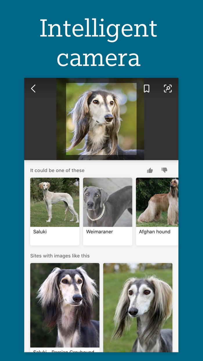 Bing Search Screenshot
