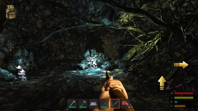 ‎Survive: The Lost Lands Screenshot