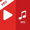 Mp4 Video to MP3 Converter Pro