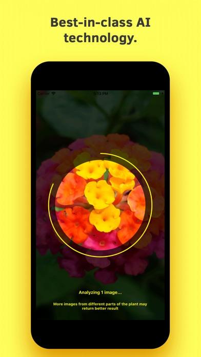 Plant Identification screenshot 3