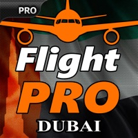 Codes for Pro Flight Simulator Dubai Hack