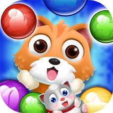 Activities of Rescue pet pop bubble shoot cat