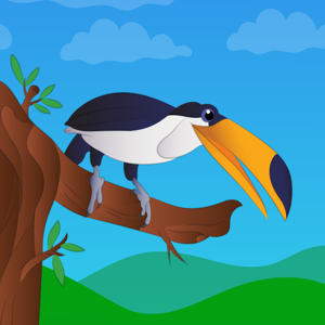 Friendly Birds - Social Networking app